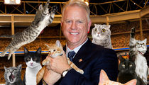 Boomer Esiason Signs On for 'Kitten Bowl V'