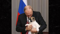Vladimir Putin Gets Puppy for His Birthday ... Pray for the Puppy!!!