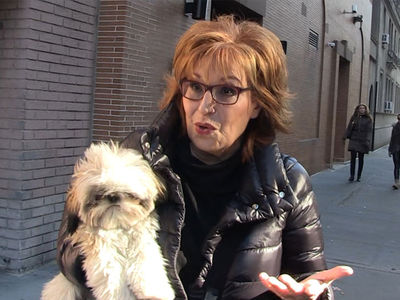 Joy Behar Says Matt Lauer's Secret Door Lock Not So Rare