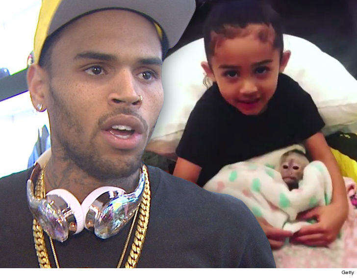 Chris Browns Daughter Didnt Get The Monkey Its His Pet Tmz