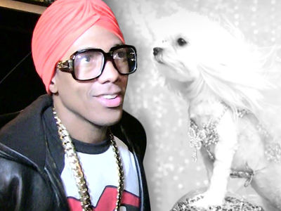 Nick Cannon Cast Mariah Carey's Dog Look-alike In 'Dream Girl' Vid