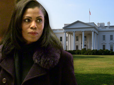 Secret Service Yanked Omarosa's White House Access Card
