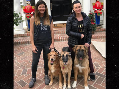 Kyle Richards' Home Protected by 3 Freshly Trained Dogs