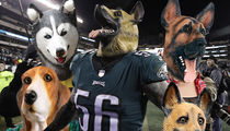 Philadelphia Costume Shops Scrambling For Dog Masks