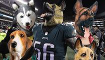 Philadelphia Costume Shops Scrambling For Dog Masks