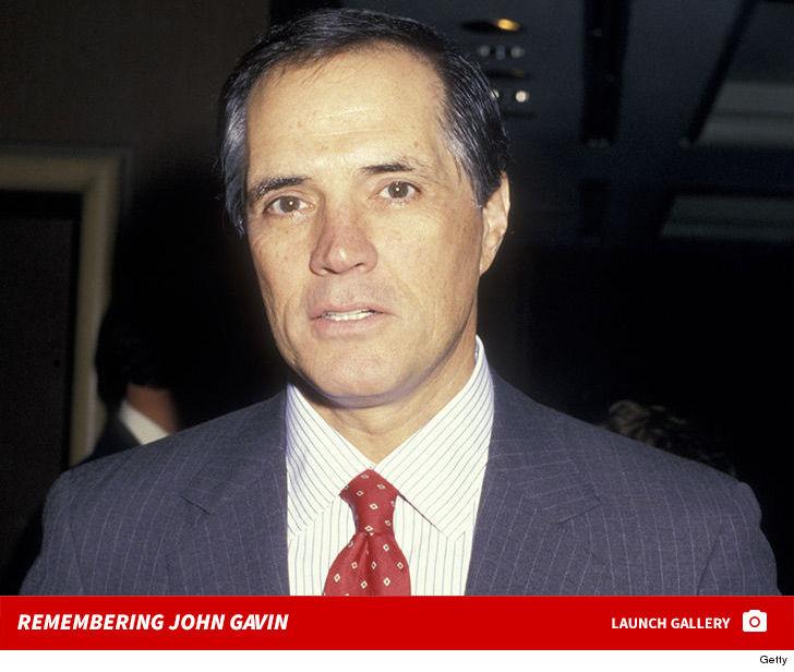 John Gavin ambassador