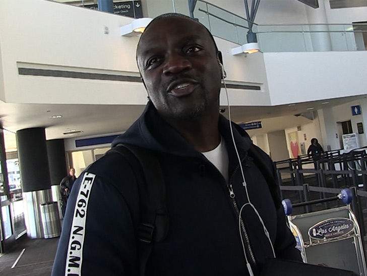 Akon I Could Have Restored Power to Puerto Rico Months Ago