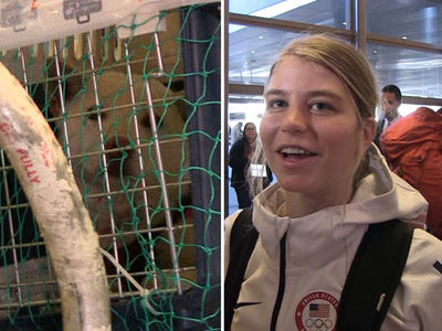 U.S. Olympian Saves Adorable Dog from S. Korea Butcher