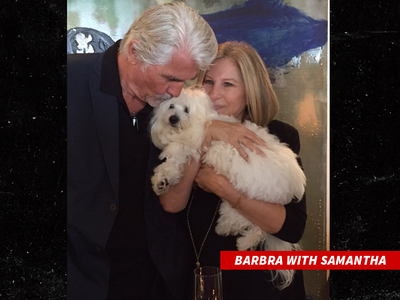 Barbra Streisand Successfully Cloned Her Late Dog Samantha
