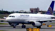 United Airlines Rolling Out New Pet Carrier Tags After Dog's Death
