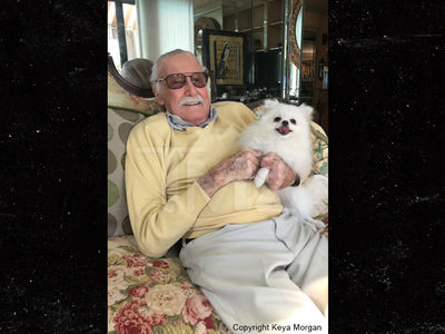 Stan Lee's Missing Dog Found & Returned by NFL Legend Jim Brown