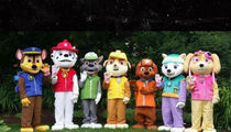Nickelodeon's Parent Company Sues Over 'Paw Patrol' Costumed Characters