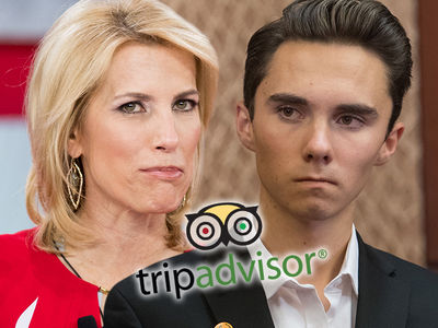 Laura Ingraham Loses TripAdvisor, Nutrish Ads in Backlash to David Hogg Cyberbullying