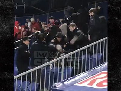 Violent Brawl at NY Red Bulls Game, Fan Kicked Down the Stands