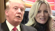 Donald Trump Asks Judge for Pause on Stormy Daniels Case Due to Michael Cohen Raid