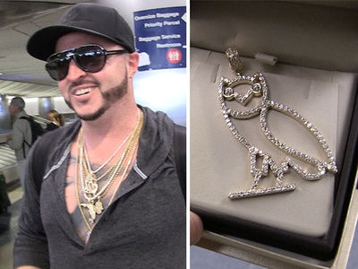 Drake's Dad's New OVO Chain Left Unattended at LAX, Briefly