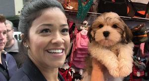 Gina Rodriguez Drops $2.5k On Pooch