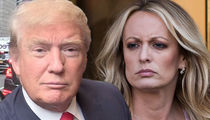 Prez Trump and Michael Cohen Get 90-Day Stay in Stormy Daniels Case