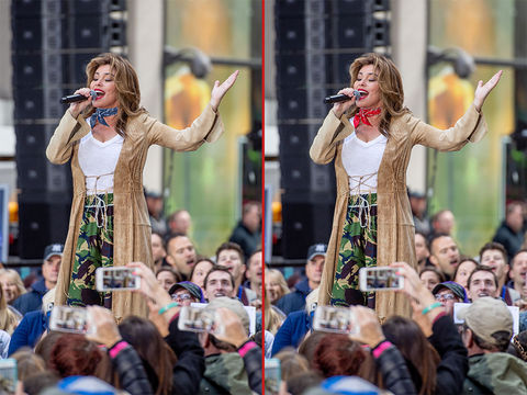 Can you spot the THREE differences in these Shania Twain photos?