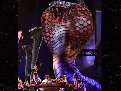 Taylor Swift Kicks Off Reputation Tour with Giant Snake