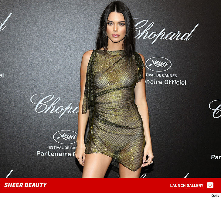 Kendall Jenner Wears Completely See-Through Dress at Cannes