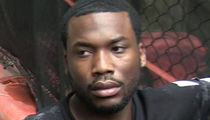 Meek Mill Rallies Support to Get Conviction Overturned
