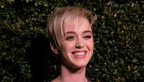 Katy Perry Buys Drinks for Santa Barbara Crowd During Benefit Concert