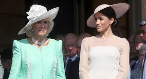 Camilla Weighs In On Meghan Markle's Family Drama