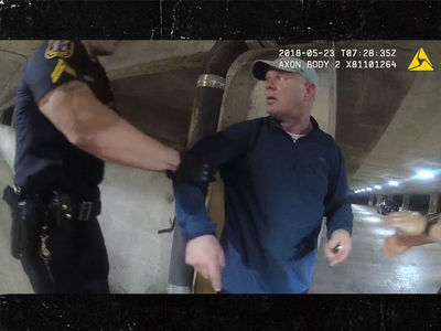 Lenny Dykstra Arrest Video Released: I'm A Felon, I Can't Have A Gun!