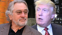 Trump Protester Interrupts Robert De Niro's Broadway Show