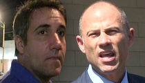 Michael Cohen Asks Judge to Muzzle Stormy Daniels' Lawyer Michael Avenatti