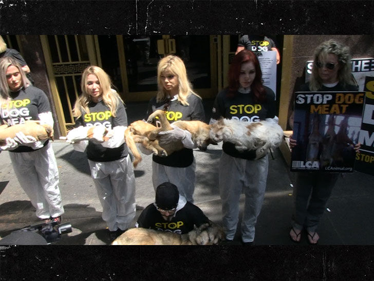 Kim Basinger held a photo of dead dogs to protest Korea's dog meat trade, but Priscilla Presley took it a step further.