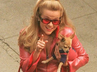 Which 'Legally Blonde' Star Hasn't Heard from Reese About Third Movie? (Exclusive)
