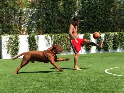 Lionel Messi Plays Soccer Keep-Away With Dog Twice His Size