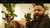 DJ Khaled Tries Goat Yoga for Rum Ad and It's Hilarious