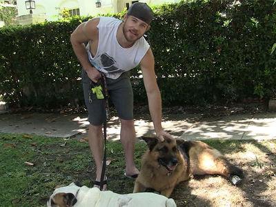 '90210' Star Trevor Donovan Rips 'Greedy Breeders' for Ailing German Shepherd