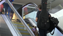 Dennis Quaid's Dog Takes Dangerous Escalator Ride