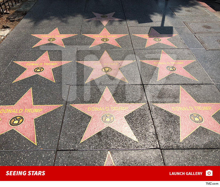 Fake Donald Trump Stars Popping Up All Over Hollywood Blvd.