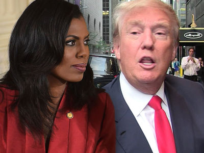 Omarosa Claims Donald Trump Used Racial Slurs in White House