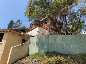 Pauly Shore Renovating Mitzi Shore's Home