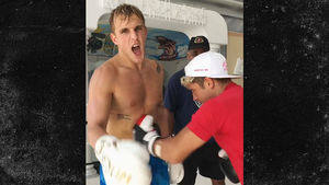 Jake Paul Gets Drilled In the Stomach, Punch Me Harder!!!