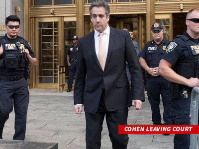 Trump's Ex-Lawyer Michael Cohen Pleads Guilty to Campaign Law Violations, Tax Fraud