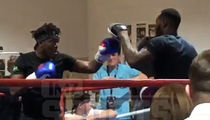 KSI Crushes Boxing Workout Before Logan Paul Fight