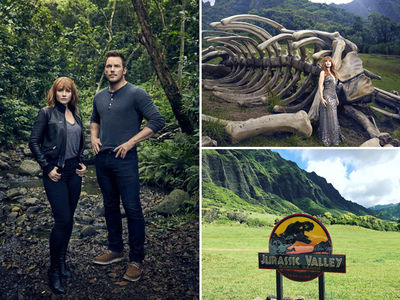 'Jurassic Park' Ranch in Hawaii Closed as Hurricane Bears Down
