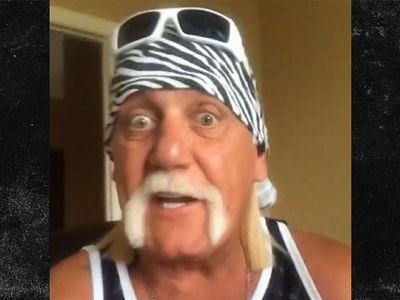 Hulk Hogan Reuniting With nWo, 'We'd Murder The Shield!'