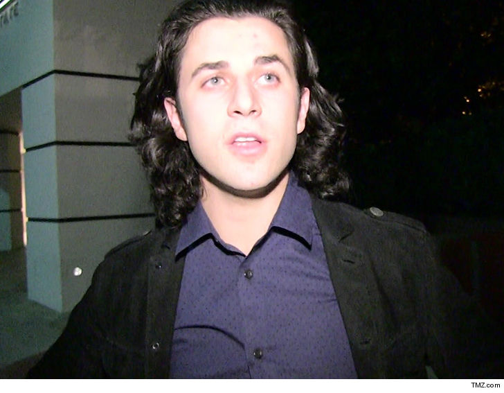 Disney star David Henrie 'humiliated' after gun arrest at airport