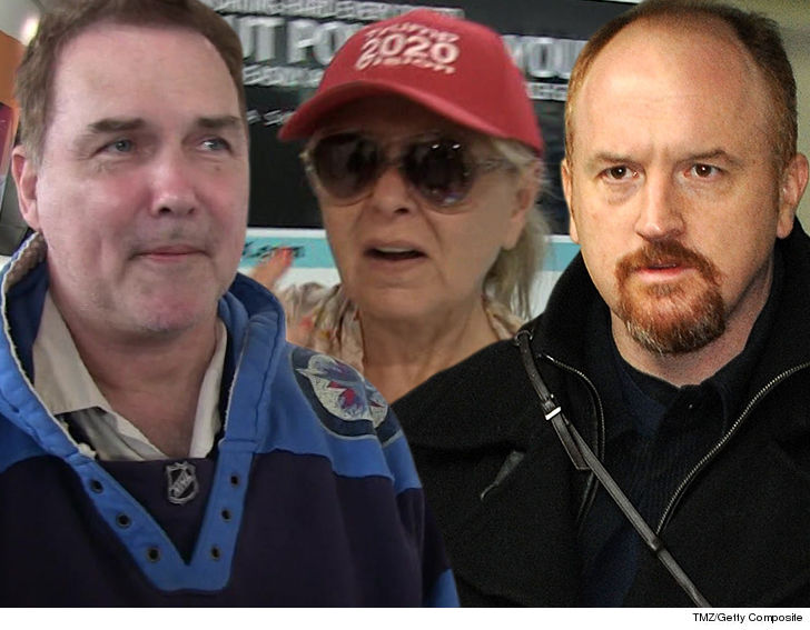 0911 roseanne louis ck norm mcdonald tmz getty 6 - Norm Macdonald Defends Louis C.K. and Roseanne Barr, Bashes #MeToo Movement