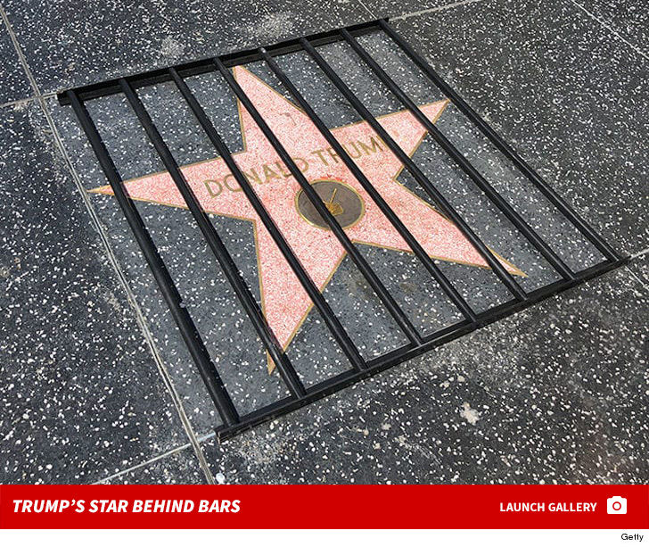 Donald Trump Gets Prison Bars Treatment on Hollywood Walk of Fame ...