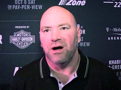Dana White Warns Logan Paul, You'd Get 'Hurt Badly' In UFC