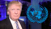 United Nations General Assembly Events Cost U.S. Taxpayers Millions